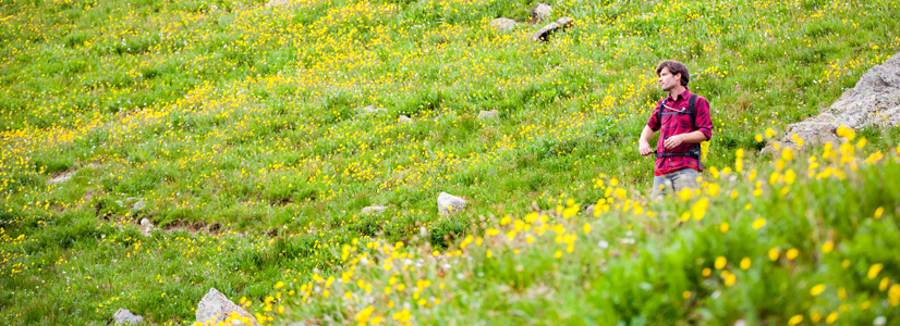 Spring outside of Durango, Colorado